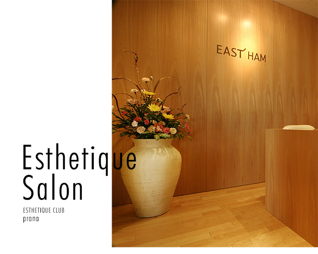 Esthetique Salon